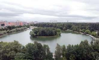 Измайловский парк с высоты птичьего полета